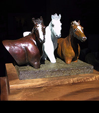 Wild Sky Farm Trophy for PCHA Pony Division